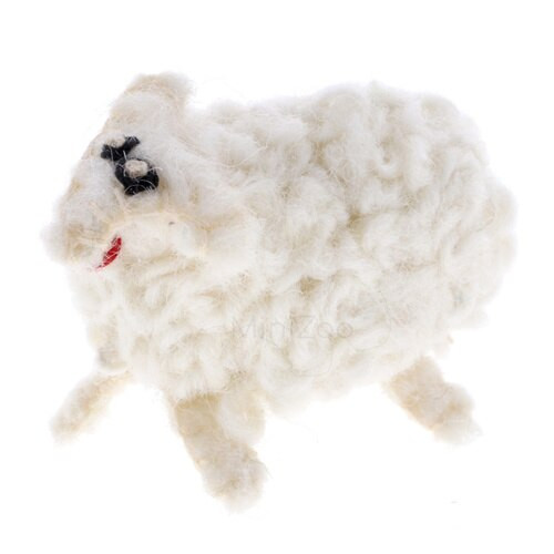 Papoose Little Sheep