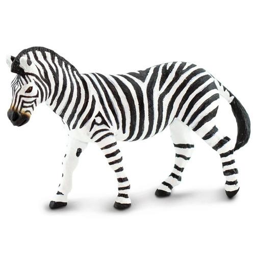 Safari Plains Zebra