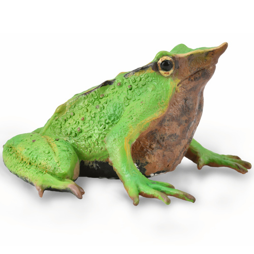 CollectA Darwin's Frog