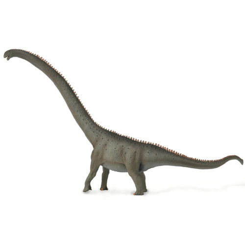 CollectA Mamenchisaurus side  2