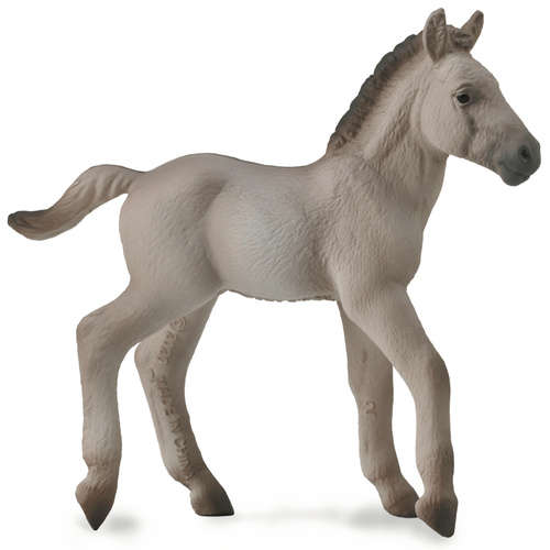 CollectA Konik Foal Blue Dun
