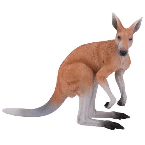Mojo Kangaroo Male