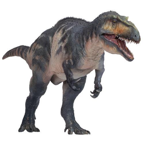 PNSO Connor The Torvosaurus