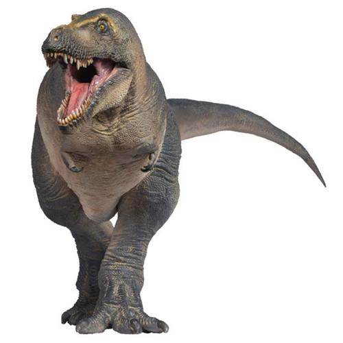 PNSO Chuanzi the Tarbosaurus