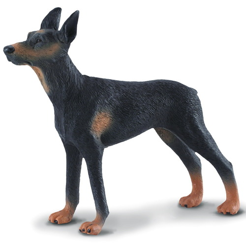 CollectA Doberman Pinscher