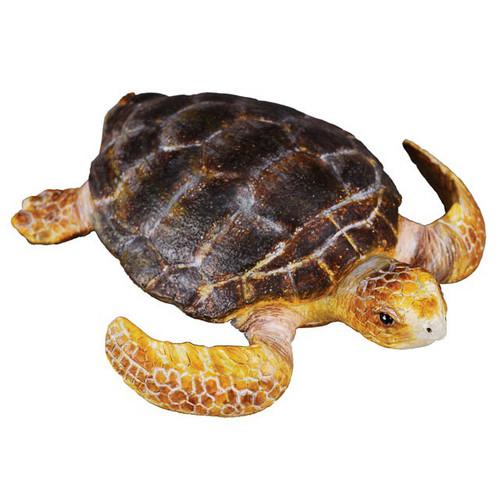 CollectA Loggerhead Turtle