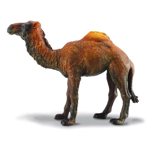 CollectA Dromedary Camel