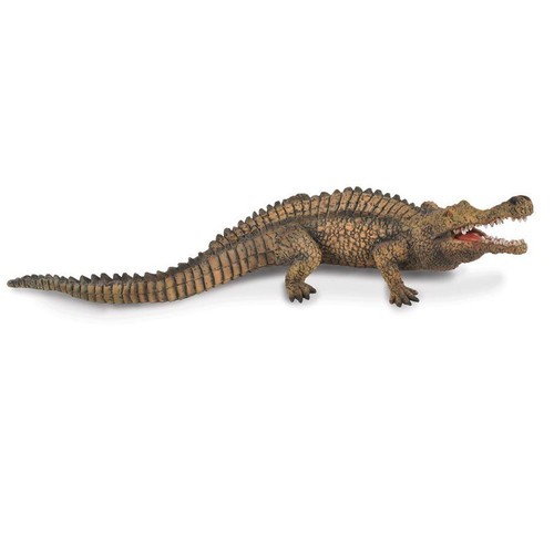 CollectA Sarcosuchus