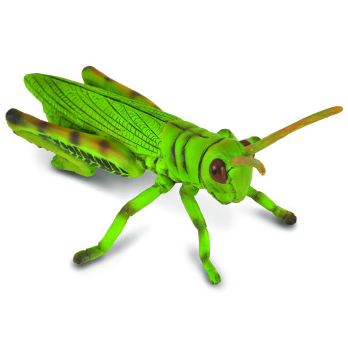 CollectA Grasshopper
