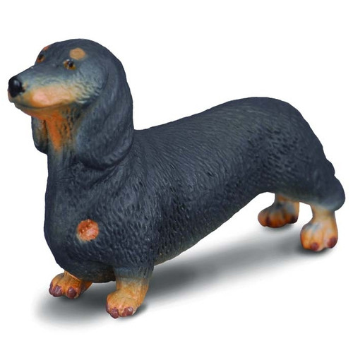 CollectA Dachshund
