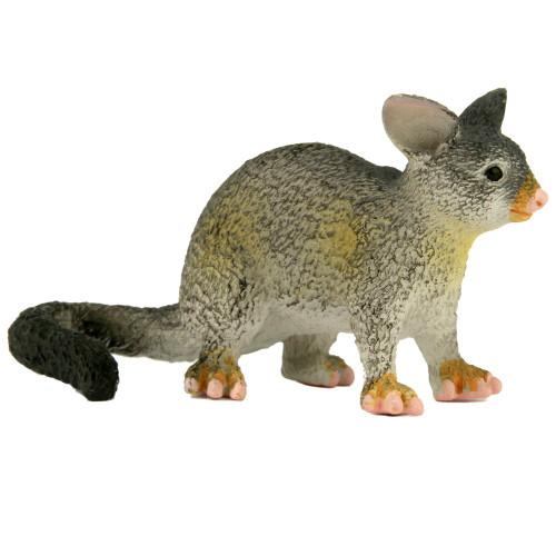 Small Possum