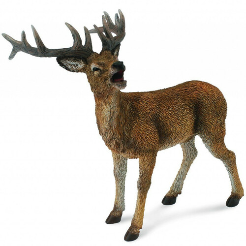 CollectA Red Deer Stag