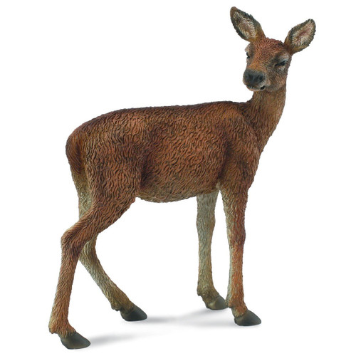 Collecta Red Deer Hind