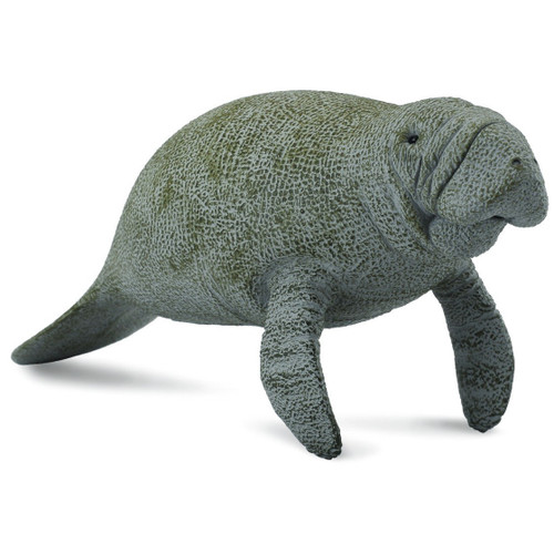 CollectA Manatee
