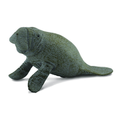 CollectA Manatee Calf Sitting