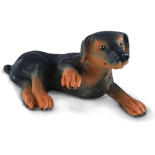 CollectA Doberman Pinscher Puppy