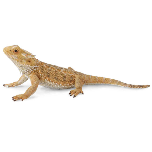 CollectA Bearded Dragon Lizard