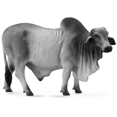 CollectA Brahman Bull