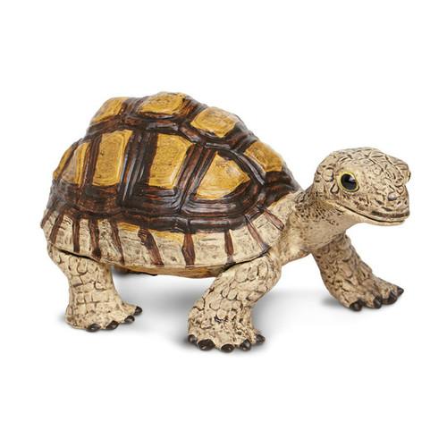Safari Ltd Tortoise IC