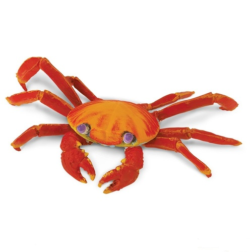 Safari Ltd Galapagos Sally Lightfoot Crab IC