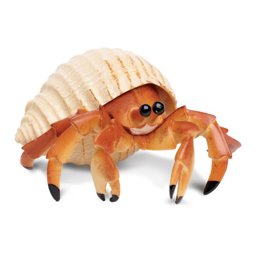 Safari Ltd Hermit Crab IC
