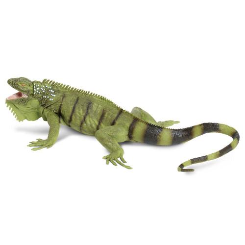 Safari Ltd Iguana IC