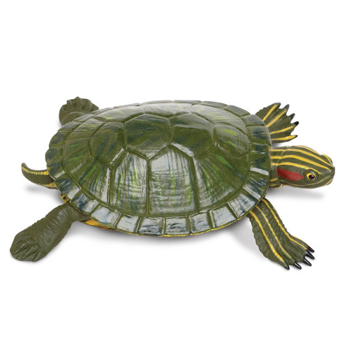 Safari Ltd Red-Eared Slider Turtle IC