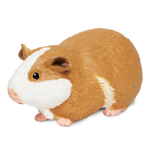 Safari Ltd Guinea Pig IC