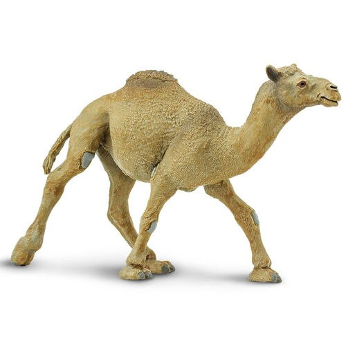 Safari Ltd Dromedary Camel
