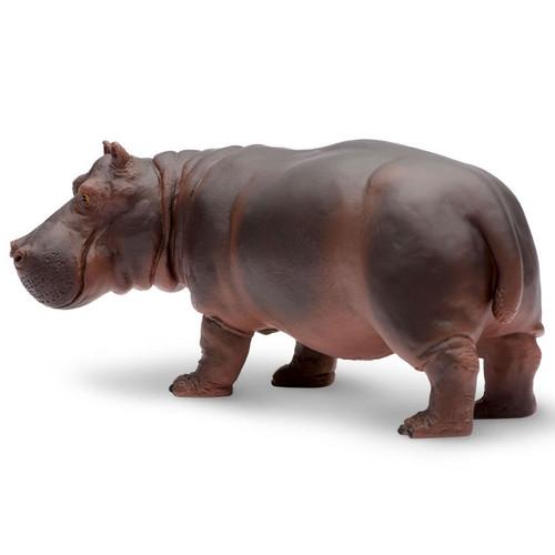 Safari Ltd Hippopotamus