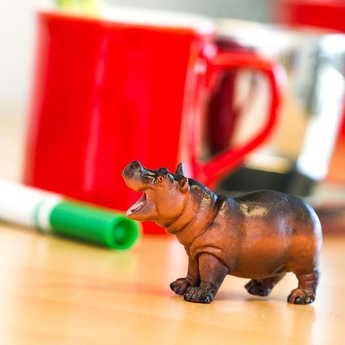 Safari Ltd Hippopotamus Baby