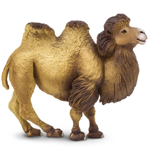 Safari Ltd Bactrian Camel