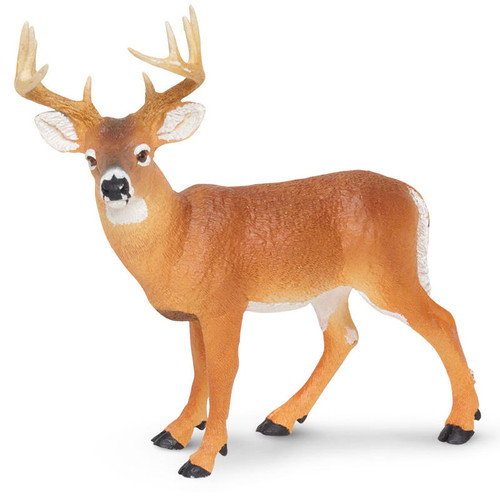 Safari Ltd Whitetail Buck