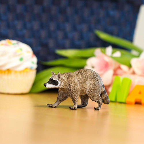 Safari Ltd Raccoon