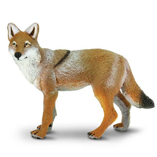 Safari Ltd Coyote