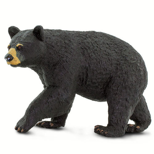 Safari Ltd Black Bear
