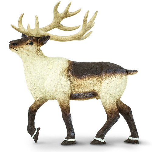 Safari Ltd Reindeer
