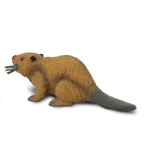 Safari Ltd Beaver