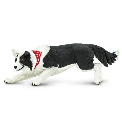 Safari Ltd Border Collie