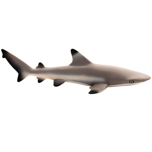 Safari Ltd Blacktip Reef Shark