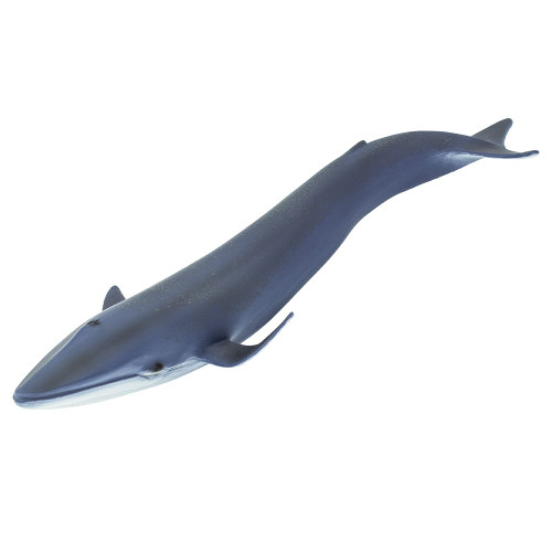 Safari Ltd Blue Whale