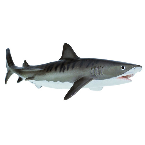 Safari Ltd Tiger Shark Monterey Bay Aquarium