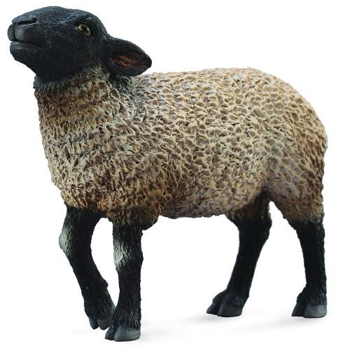 CollectA Suffolk Black faced Sheep