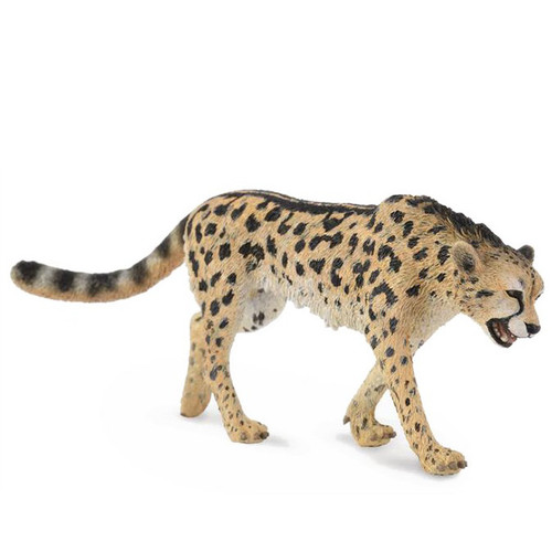 CollectA King Cheetah