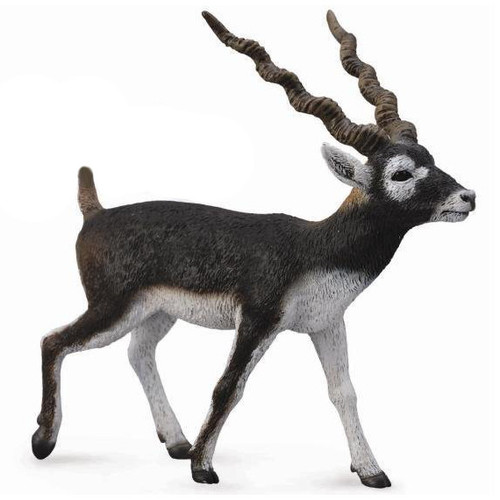 CollectA Blackbuck Antelope