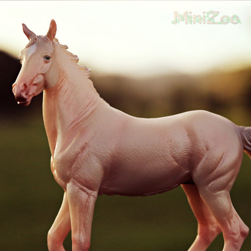 Akhal Teke Mare Perlino CollectA