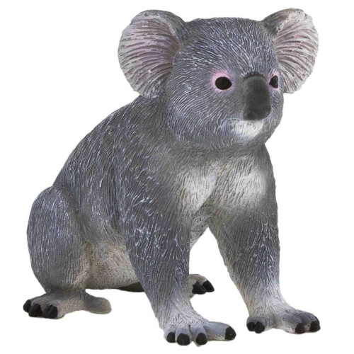 Mojo Koala