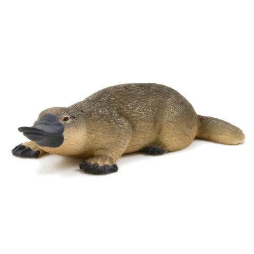 Mojo Platypus