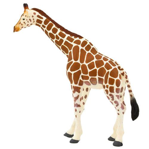Mojo Giraffe