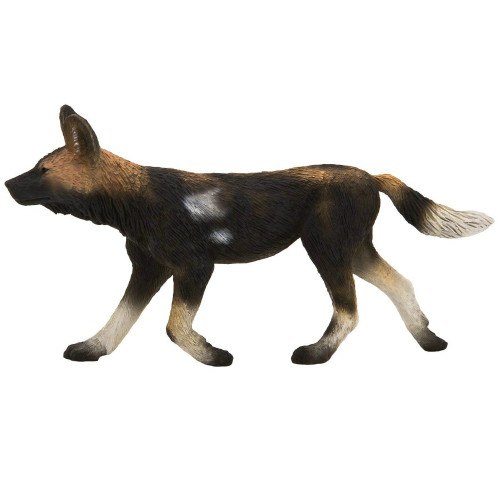 Mojo African Painted Dog